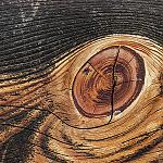 Aprílové akcie o drevostavbách